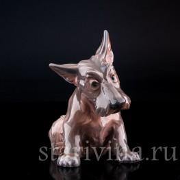 Фигурка собаки из фарфора Терьер, Dahl Jensen, Дания, сер. 20 в.
